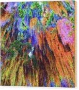 moss of Color Wood Print