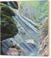 Moss On Waterfall True Color Wood Print