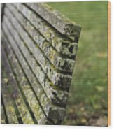 Mossy Bench Wood Print