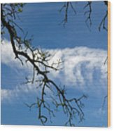 Mossy Branches Skyscape Wood Print