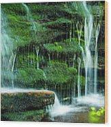 Mossy Falls - 2981 Wood Print