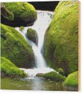 Mossy Falls Wood Print