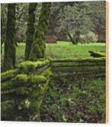 Mossy Fence 2 Wood Print