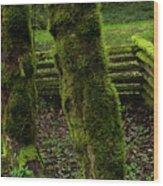 Mossy Fence Wood Print