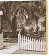 Mossy Live Oak And Picket Fence Wood Print