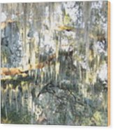 Mossy Live Oak Wood Print