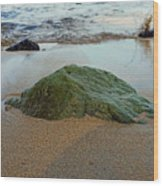 Mossy Rock Wood Print
