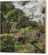 Mossy Rocks And Water Stream Wood Print