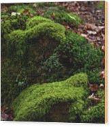 Mossy Rocks In Spring Woods Wood Print