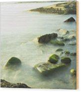 Mossy Rocks On Shoreline Wood Print