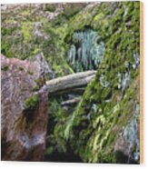 Mossy Rocks Wood Print