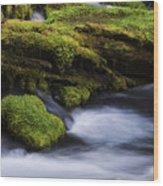 Mossy Rocks Oregon 3 Wood Print