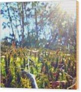 Mossy Sunburst Wood Print