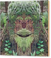 Mossman Tree Stump Wood Print