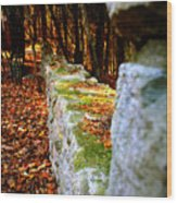 Mossy Wall Wood Print