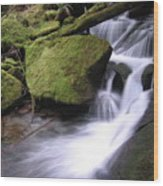 Mossy Waterfall Landscape Wood Print