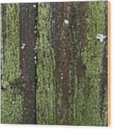 Mossy Winter Fence Wood Print