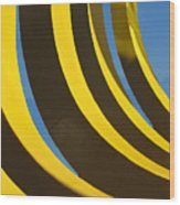 Mostly Parabolic Wood Print