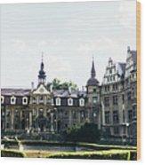 Moszna Panorama Wood Print