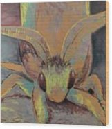 Moth Of Little Green Wood Print