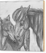 Mother And Foal Wood Print
