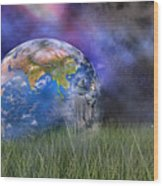 Mother Earth Series Plate4 Wood Print