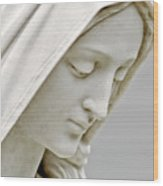 Mother Mary Comes To Me... Wood Print by Greg Fortier