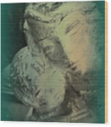 Mother With Infant Wood Print
