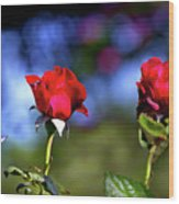 Mother's Day Roses Blank Wood Print