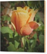 Mother's Rose Wood Print