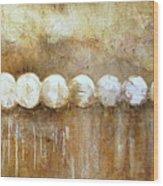 Motions Of The Heavens Wood Print
