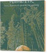 Motivational Travel Poster - Peripatetic 3 Wood Print