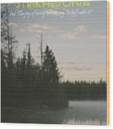 Motivational Travel Poster - Strikhedonia Wood Print