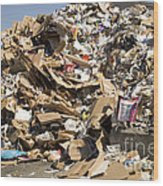 Mound Of Recyclables Wood Print