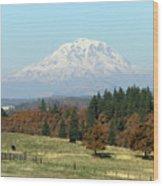 Mount Adams Pasture Land Wood Print