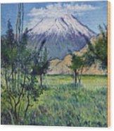 Mount Ararat North Eastern Anatolia Turkey 2006  Wood Print