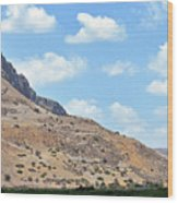Mount Arbel 5 Wood Print