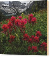 Mount Assiniboine Canada 11 Wood Print