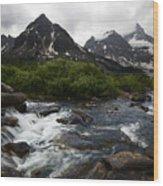 Mount Assiniboine Canada 15 Wood Print