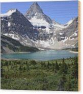 Mount Assiniboine Canada 16 Wood Print