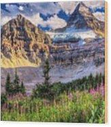 Mount Assiniboine Wood Print
