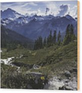 Mount Baker From The Lake Ann Trail Wood Print