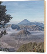 Mount Bromo National Park - Java Wood Print