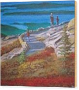 Mount Cadilac Path Wood Print