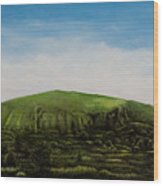 Mount Coolum Wood Print
