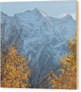 Mount Currie Autumn Wood Print