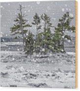 Mount Desert Narrows Snowscape Wood Print