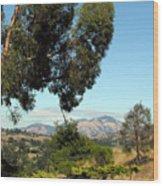 Mount Diablo Wood Print