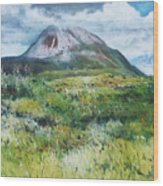 Mount Errigal County Donegal Ireland 2016 Wood Print