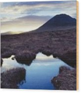 Mount Errigal, County Donegal, Ireland Wood Print by Gareth McCormack